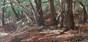 Enchanted Woods 27x13